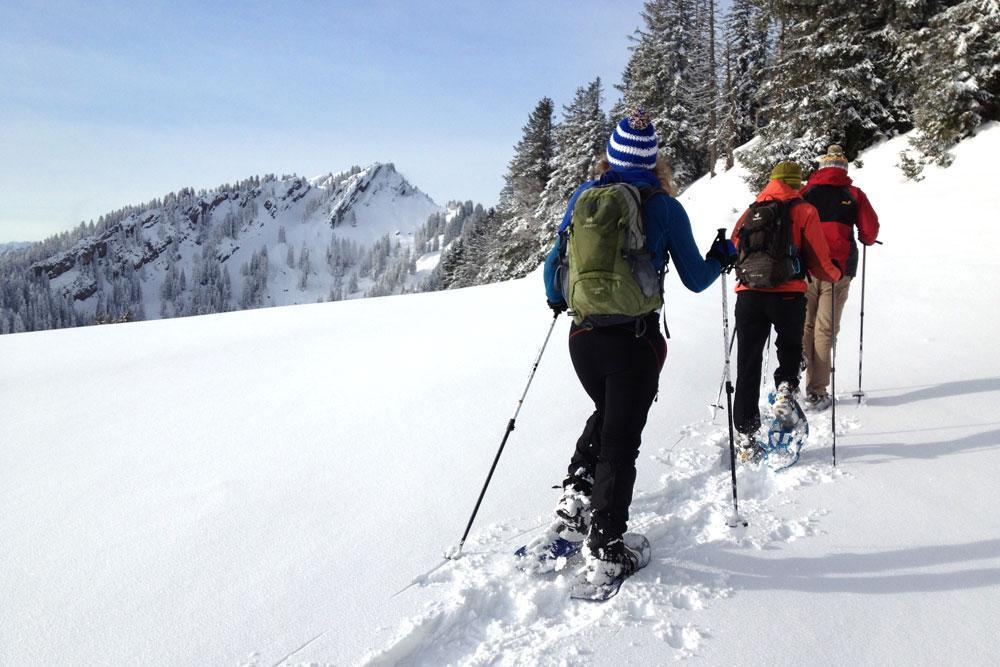 Hochgrat Oberstaufen