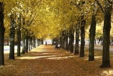 Uma visão cronológica do clima na Alemanha