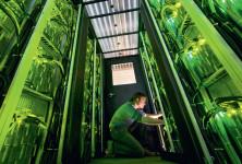 STEM: Profissões em alta na Alemanha