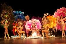 Tangará Brasil Dance