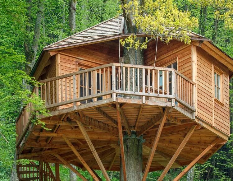 Conheça os 5 Melhores Hotéis na Árvore da Alemanha